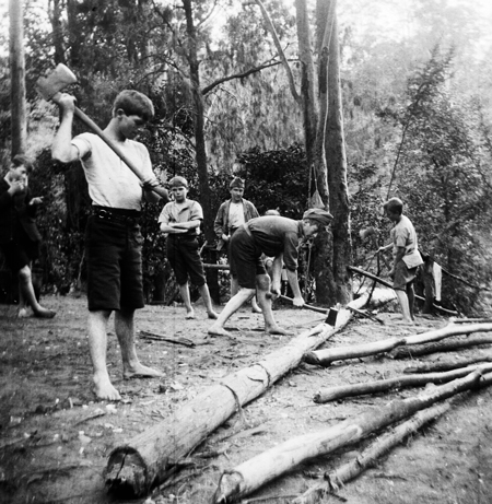 Wood Chopping. Image: J.X. Coutts